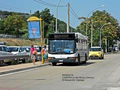 NAPOLEONE Viaggi (2) (AlebusITALIA) Tags: autobus bus tram trasporti trasportipubblici tpl transportation publictransport mobilit ortona bredamenarinibus napoleoneviaggi m231 minibus