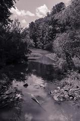 05/52d Hidden Lake (Doug.Mall) Tags: dogwood52 52weeks apexcommunitypark bw challenge landscape photochallenge blackandwhite northcarolina usa