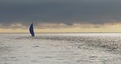 Voilier en rade de Brest (morganelafond) Tags: mer sea voilier brest rade bateau ciel