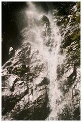 PAhuma 3 (Patrick J. Negwer) Tags: ecuador pichincha pintag pahuma reserva cascada rio agua verde sol cielo perro perros gusano plantas naturaleza
