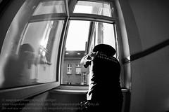 Alltag der Berliner Feuerwehr (Agentur snapshot-photography) Tags: berlin europa pankow prenzlauerberg berufe berufsalltag berufswelten einzeln 010600 einzelaufnahme einzelbild single feuerwehr fireandrescue firedepartment berlinerfeuerwehr feuerwehreinsatz einsatz mission technischehilfleistung feuerwehrmann firefighter feuerwehrleute fireman firemen effekt schwarzweiss blackwhite bw sw deutschland deu