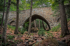 Hemlock Bridge (Acadia National Park) (*Ken Lane*) Tags: asticou geo:lat=4433201800 geo:lon=6828201413 geotagged mountdesert unitedstates usa acadia acadianationalpark attraction barharbor barharbormaine bridge carriageroad carriageroadbridge eastcoast fauxarches hancockcounty hancockcountymaine hemlockbridge historicplace httpwwwacadiawsimagesmapsacadiagif httpwwwcitrusmilocomacadiaguidecarriageroadbridgescfm httpswwwnpsgovacadplanyourvisituploadcrummappdf maine mdi mountdesertisland nationalpark nationalregisterofhistoricplaces nikon northeastatlantic northeastunitedstates northeasternunitedstates outdoor rock rockformation sightseeing touristattraction travel travelphotography tree usnationalregisterofhistoricplaces