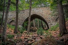 Hemlock Bridge (Acadia National Park) (*Ken Lane*) Tags: asticou geo:lat=4433201800 geo:lon=6828201413 geotagged mountdesert unitedstates usa acadia acadianationalpark attraction barharbor barharbormaine bridge carriageroad carriageroadbridge eastcoast fauxarches hancockcounty hancockcountymaine hemlockbridge historicplace httpwwwacadiawsimagesmapsacadiagif httpwwwcitrusmilocomacadiaguidecarriageroadbridgescfm httpswwwnpsgovacadplanyourvisituploadcrummappdf maine mdi mountdesertisland nationalpark nationalregisterofhistoricplaces nikon northeastatlantic northeastunitedstates northeasternunitedstates outdoor rock rockformation sightseeing touristattraction travel travelphotography tree usnationalregisterofhistoricplaces
