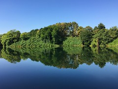Vogelsanger See in Kln (dronepicr) Tags: reflection swim lake cologne kln iphone reflexionen schwimmen see