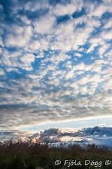 cloud porn (Fjola Dogg) Tags: 2016 fjoladogg fjladgg nature nttra is padfjoladogg pad mdfjladgg md naturaleza natur natura naturae natuur naturen naturalesa natureza nopeople iceland islandia sland islande islanti islndia islann islanda izlanda izland ijsland islando island sland lislande landscape lanature