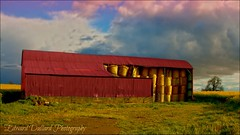 Red barn 4 (Edward Dullard Photography. Kilkenny, Ireland.) Tags: ireland red barn landscape rouge landscapes farm barns straw eire paysage emeraldisle paysages grange foin strawbales strawbale carlow balesofstraw granges baleofstraw bottedepaille bottesdepaille edwarddullardphotographykilkennyireland