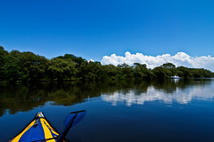 Kayaking in the Mangrove (Ant1_G) Tags: park blue sky usa cloud sun reflection nature water sport de relax mexico kayak gulf state florida fort outdoor air salt paddle saturday canoe inflatable mangrove elements fl advance soto advancedframe