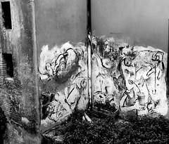 Bologna 30_31_05_2012 068 (Una Montagna d'Idee di Nicola Vicini) Tags: como del italia photographer arte nicola università reporter musei chiesa musica bologna fotografia lombardia architettura gae ville barocco reportage fotografo emiliaromagna torredegliasinelli italiano romanico guida canzo scultura gotico centrostorico sasso pittura settechiese mostre chiese vicini naturale francese montagnola trame ravella sanbartolomeo sorgenti chiesadisantostefano universitàdibologna libreriatrame oratoriodisantacecilia bucodelpiombo facilitatore lesettechiese nicolavicini guidaambientaleescursionistica multimediatecario terremoto2012 monicagalanti bologna3031052012 galleriadartesquadro stamperiasquadro albergorossini tesseralo123 sorgentidellamenaresta lambroriserva malascarpavalle