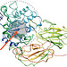 SBI4U Unit 1 Biochemistry