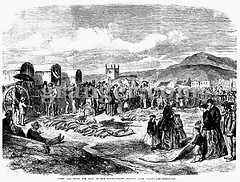 0079669 (Granger Historical Picture Archive) Tags: elephant men english dutch shopping boer women child ivory hide engraving marketplace dailylife middle colony grahamstown trader colonialism 1866