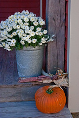 Vermont Decor (ArtApril) Tags: rural october vermont pumpkins decorating countrystyle phototrips wwwyourphototravelguidecom
