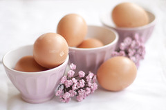 (Isabel Pava) Tags: stilllife soft softness eggs getty gettyimages gettyimagesiberiaq3 gettyimagesiberiaq12012