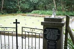 Children's graveyard (arripay) Tags: connemara galway ireland letterfrack industrial school abuse graves graveyard cemetery cemetary children