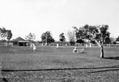 Croquet lawns, Alexander Park, Burnett River, Bundaberg, October 1931 (Queensland State Archives) Tags: croquet olympic australia qsa archive queensland nurse 1931 bundaberg
