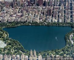 Jaqueline Kennedy Onassis Reservoir in Central Park in New York City Aerial View (Performance Impressions LLC) Tags: centralpark jaquelinekennedyonassisreservoir reservoir aerial manhattan city park newyorkcitydepartmentofparksandrecreation centralparkconservancy sheepmeadow tavernonthegreen 5thavenue newyork unitedstates usa 13892931902