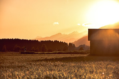 Cottage on fire (danielfreidl1) Tags: sunset summer sun beautiful composition landscape photography austria sterreich nice nikon warm flickr mood sonnenuntergang view country cottage htte feld krnten carinthia special landschaft sonne lichter summerday 2016 d7200
