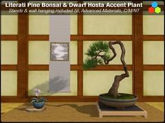 Bonsai Sale (cube.republic) Tags: zbrush blender blendercycles bonsai pine tree literati moss hosta secondlife mesh