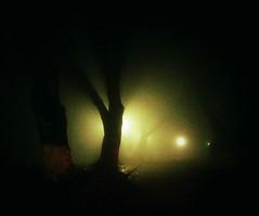 Night (PattyK.) Tags: night ioannina giannena giannina epirus ipiros mycity whereilive february 2016 fog winter ilovephotography       lovelycity lakeside lakefront