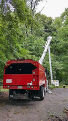 CEI removes tree at my house 01 - Cleveland Heights microburst - 2016-08-12 (Tim Evanson) Tags: clevelandheightsohio clevelandheightsmicroburst weather trees myhouse