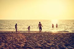 _DSC1437 (peter3400) Tags: sonyalpha sony ilce 7ii 7m2 summer sunset warmth silhouette minolta minolta4ever manual 3570f35 macro md albania