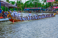 Rowers At The Finish Line (wandercrumbs) Tags: green nature indian boat palm river lake culture coconut exotic backwaters snakeboatrace alleppey alappuzha kerela southindia south scenic boathouse boats asia landmark