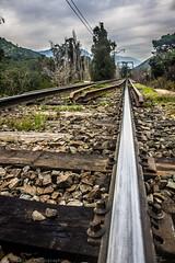 M Y C O U R S E (Jonhatan Photography) Tags: canon chile explorer trail linea vsco hdr folk fuga