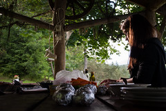 Preparing the fiest (modestmoze) Tags: girl woman architecture outside outdoors lithuania 500px 2016 summer august trees wood wooden shed food nature foil sky blue clouds hair standing hand hands preparing table potatoes carrots orange grey black sunny shadows day lines plates bowl leaves chef making