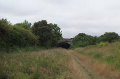 Walking around the Devil's Dyke (Shelley & Dave) Tags: devilsdyke
