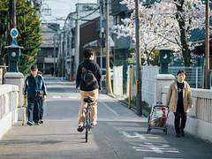 Fushimi momoyamaHourai-bashi (slipper55) Tags:     japan kansai kyoto fushimi streetphotgraphy japanese