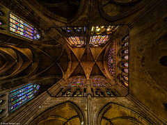 Looking at the ceiling (David Martn Lpez) Tags: architecture arquitectura leon castillayleon cathedral catedral ceiling techo davidmartinlopez