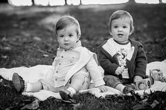 3Q0A3552-2 (Marko & Milena) Tags: lazar luka stanley park vancouver twins boys baby