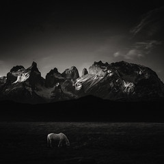Morning will come, it has no choice (Andrew J Lee) Tags: patagonia chile mono torresdelpaine mood