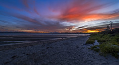 Home (Tonitherese) Tags: bridge sydney bay beach landscape ocean sunset