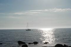 Set the sail (johanssoneva) Tags: havet vatten landskap bt strand sjsidan