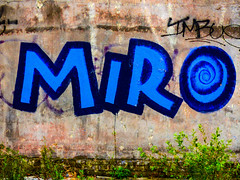 Miro (Steve Taylor (Photography)) Tags: miro art graffiti streetart tag wall blue green brown newzealand nz southisland canterbury christchurch cbd city texture weeds