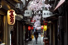 Shinjuku Omoide Yokocho (mrhayata) Tags: lamp japan geotagged restaurant tokyo blog shinjuku mrhayata geo:lon=139699569 geo:lat=35692757