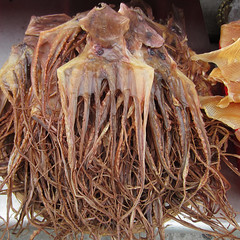 Lantau island - (Harry -[ The Travel ]- Marmot) Tags: world china city trip travel urban food fish travelling hongkong asia group reis octopus seafood dried traveling stad lantau octopussy reizen azi calamaris inktvis gedroogd zeevruchten tentakels