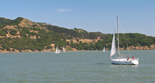 Sailboats in Sausalito