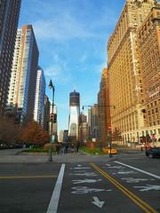 New York(233)