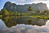 Stone Forest Karst Sulawesi (T Ξ Ξ J Ξ) Tags: indonesia geotagged nikkor d300 makassar maros southsulawesi teeje geo:lat=4939599204412814 geo:lon=1196024710596314