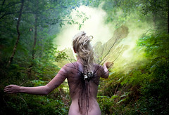 "Wonderland ""The Distant Pull of Remembrance"" (Kirsty Mitchell) Tags: fairytale forest dawn wings woods katie magic spell fantasy wonderland enchanted theresnoplacelikehome thebeginningoftheend kirstymitchell wonderlandpartii ilovethisonedearly"