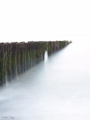 Breakwater II (Dimitri Pruym) Tags: website knokke breakwater knokkeheist belgiumcoast dimitripruym