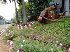 Labour Intensive (JamesWired) Tags: grass indonesia prison cutting gardener smrgsbord earthasia thebestofday gnneniyisi