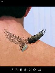 [112] FREEDOM (Efrn Rodrguez Fotografa) Tags: libertad freedom eagle aguila 366