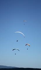 NG-41 (Touf-touf) Tags: natural games bleu ciel vol beau 2012 millau parapente haut parapentes plusieurs