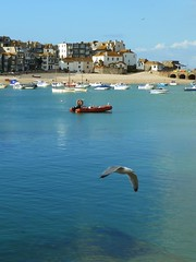 St Ives harbour (Richard and Gill) Tags: holiday seaside cornwall harbour seagull stives westcountry kernow penwith