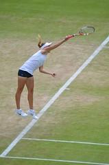 Wimbledon 7 July 2012 175 (paul_appleyard) Tags: elena wimbledon vesnina wimbledon7july2012