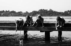Fishing? (The Fat Lady In The Cab) Tags: bw italy lake kids lago sticks fishing italia bambini lombardia varese gavirate pescare bastoni
