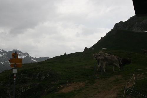Albula Pass