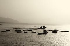 Barche e Pescherecci (Ricky92f) Tags: mare barche sole spiaggia aspra pescherecci